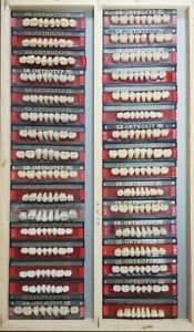 Lot X 32 Dental Lab Acrylic Teeth Dentures Vivadent Ivoclar Sr Orthotyp Pe Mix 1