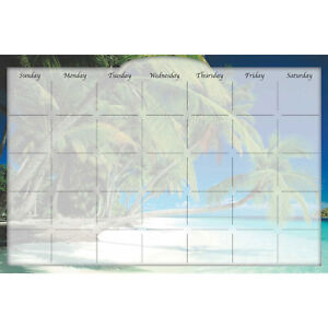 Biggies Dry erase Calendar Beach Island 36 X 24 Lot Of 1