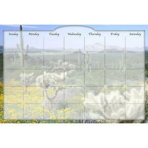 Biggies Dry erase Calendar Desert Cactus 36 X 24 Lot Of 1