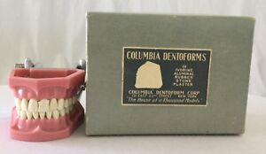 Vintage Columbia Dentoform S 562 With Box Nice