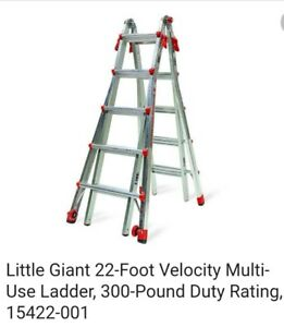 Little Giant Ladder Systems 15422 303 22 Step Ladder