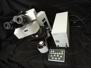 Olympus bx61trf Compound Fluorescent Microscope
