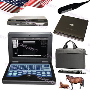 Contec Veterinary Vet Use Portable Laptop Ultrasound Scanner Machine Cms600p2
