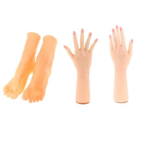 Pairs Realistic Female Hand Foot Model Jewelry Display Props Shoes Socks