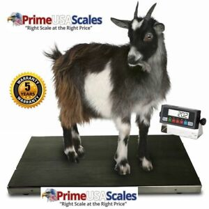 Ps as700 Vet Scale animal Scale small Livestock Scale 38x20x2
