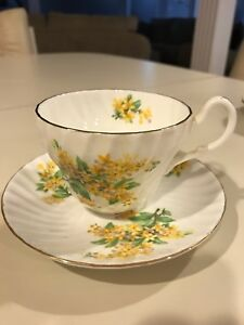 Gorgeous Bone China Cup And Saucer England