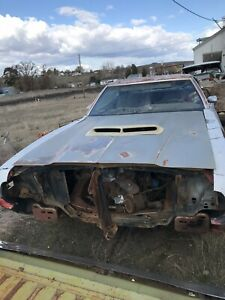 1972 Ford Gran Torino Gts Ranchero Gt Hood W Factory Scoop 72 Work W shipper dd