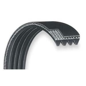 J Section Poly V Belt Choose Your Size Rib Count