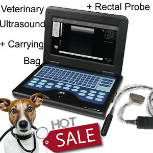 Usa Veterinary Pet Bovine equine Ultrasound Scanner Vet 7 5mhz Endorectal Probe