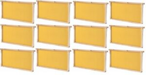 Summerhawk Ranch Frame Bees 5 11 16 Shallow Frame And Foundation 12 pack