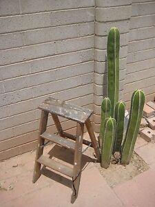 Vintage Wooden 3 Step Stool Ladder Barn Country Shabby Decor