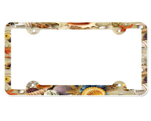 Seashells License Plate Frame