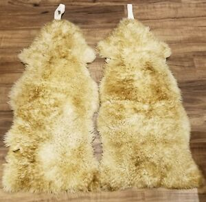 Knight Company New Zealand Sheepskin Car Seat Covers 2