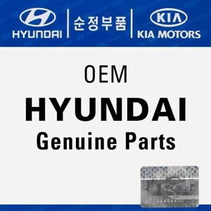 Genuine Oem Hyundai Door Sash Outer Right Tuscani Tiburon 2002 2008 82527 2c000