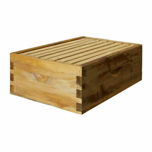 Natural Bees Wax Coated Langstroth 8 Frame Medium Box W Frames And Foundations