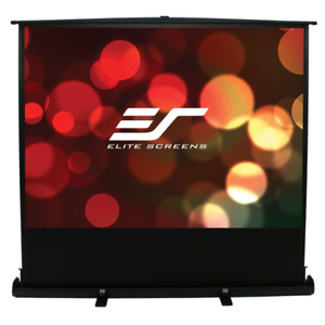 50 In H X 67 In W Manual Tripod Portable Projection Screen With Black Case