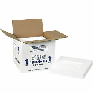 10 1 2 x8 1 4 x9 1 4 Insulated Shipping Kit 200lb Test eps Foam 2 Pack