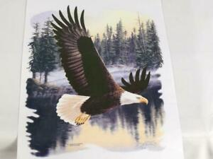 Lot Of 19 Eagle Heat Transfers 12 x8 5 Soaring Through Forest Free Shipping