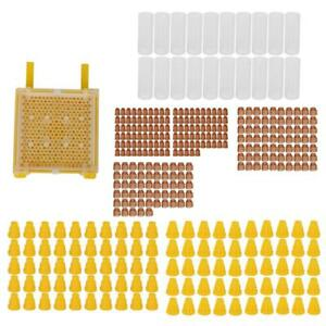 Queen Rearing Kit Cup Cell Complete Full Bee Breeding Set Beekeeping Equipment