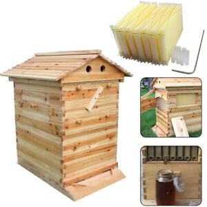 7pcs Auto Honey Bee Hive Frames With Beekeeping Wooden House Food Grade Bpa