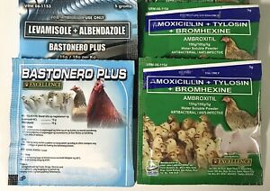 Gamefowl Excellence Ambroxitil Bastonero Medicines Chicks Hens Cocks Poultry