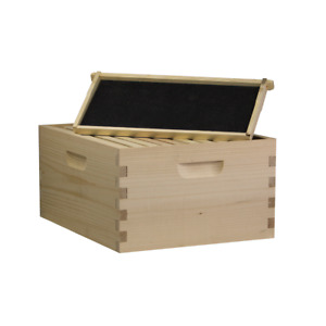 Amish Made Busy Bees n More 10 Frame Deep Brood Box W Frames And Foundations