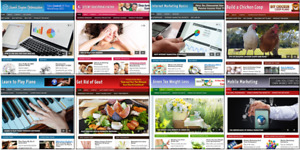 Wholesale Niche Blogs Websites For Sale 96 Turnkey Blogs Make Money At Home