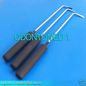 3 Pc Equine Dental Elevators Veterinary Instruments