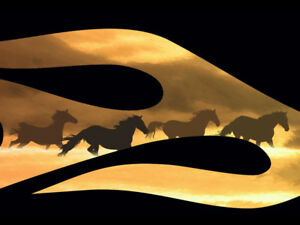 Running Horse Flame Decals Sticker Graphics Mustang Bronco 3 Color Options