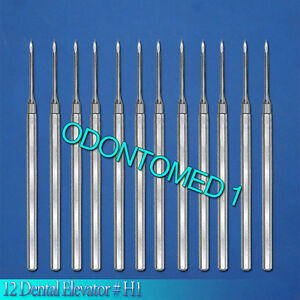 12 Dental Elevator H1 Surgical Dental Instruments