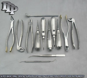 14 Pcs Basic Oral Dental Surgery Extracting Extraction Forceps Instrument Dn 535