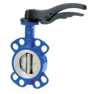 Cast Iron Wafer Butterfly Valve Ptfe Seat Stainless Disc 2 To 12