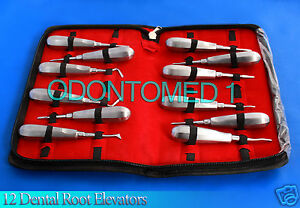 12 Dental Tooth Elevators Set Surgical Dental Instruments
