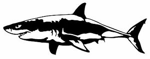 Great White Shark Vinyl Decal Car Window Wall Laptop Bumper Sticker Fish Jaws