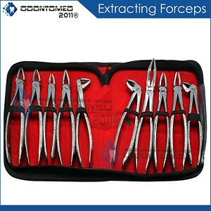 10 Pcs O r Grade Basic Dental Extracting Forceps Oral Surgery Kit Instruments
