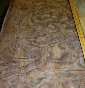 Walnut Burl Wood Veneer 19 X 29 Raw Veneer No Backing aaa Quality Grade