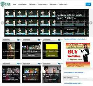 Celebrity News Gosip Video And Shopping Website Top Online Income