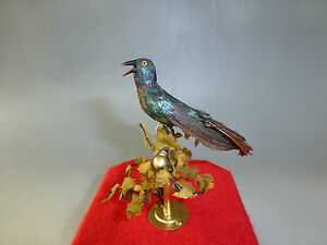 Antique German Singing Bird Cage Music Box Automaton Real Hummingbird Feathers