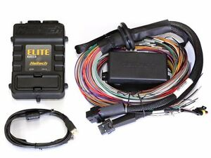 Haltech Ecu Elite 1500 dbw 2 5m 8 Ft Premium Universal Wiring Harness Kit