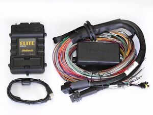 Haltech Ecu Elite 2500 dbw 2 5m 8 Ft Premium Universal Wiring Harness Kit
