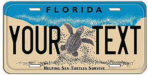 Personalized Custom Florida Turtle Vanity License Plate Auto Tag