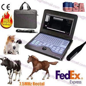 Veterinary Vet Portable Ultrasound Scanner Machine For Cow horse animal rectal