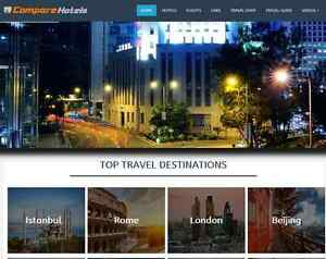 Exclusive Money Making Travel Website Business For Sale Up To 1 000 A Month