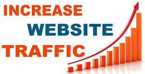 Unlimited Genuine Website Traffic For One Month Adsense Safe
