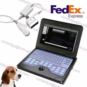 New Ce Micro Convex Veterinary Laptop Ultrasound Scanner Machine To Dog cat pet