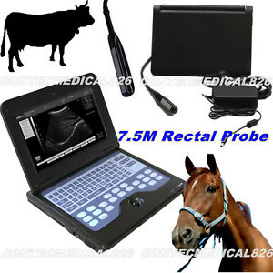 Veterinary Bovine equine Ultrasound Scanner Cms600p2 vet With Endorectal Probe