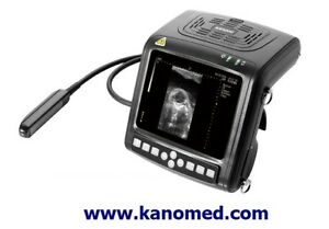 Kx5200 Veterinary Ultrasound With Rectal Probe 6 5mhz