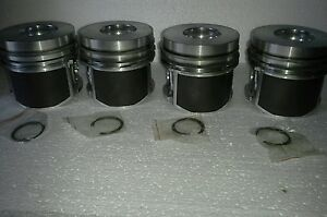 New Bf4m1011f Set Of 4 Piston For Deutz Bobcat Gehl Diesel Raco Carlton
