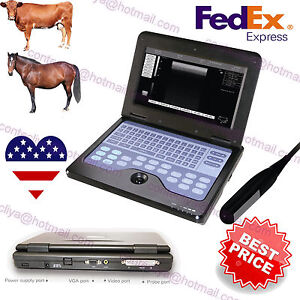 Veterinary Laptop Ultrasound Scanner Machine Animal 7 5 Rectal Probe cow horse