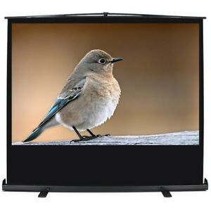 60 16 9 Ratio Pull Up Projection Mobile Professional Screen W aluminium Case